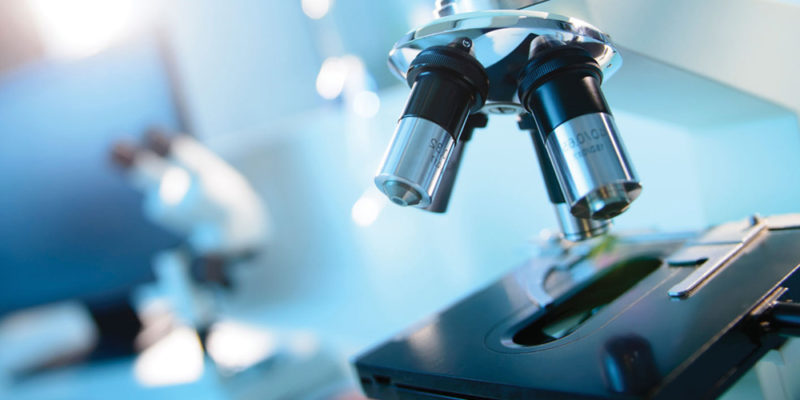 microarray service providers